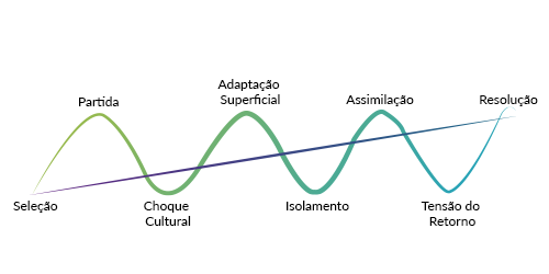 Gráfico de experiência 1